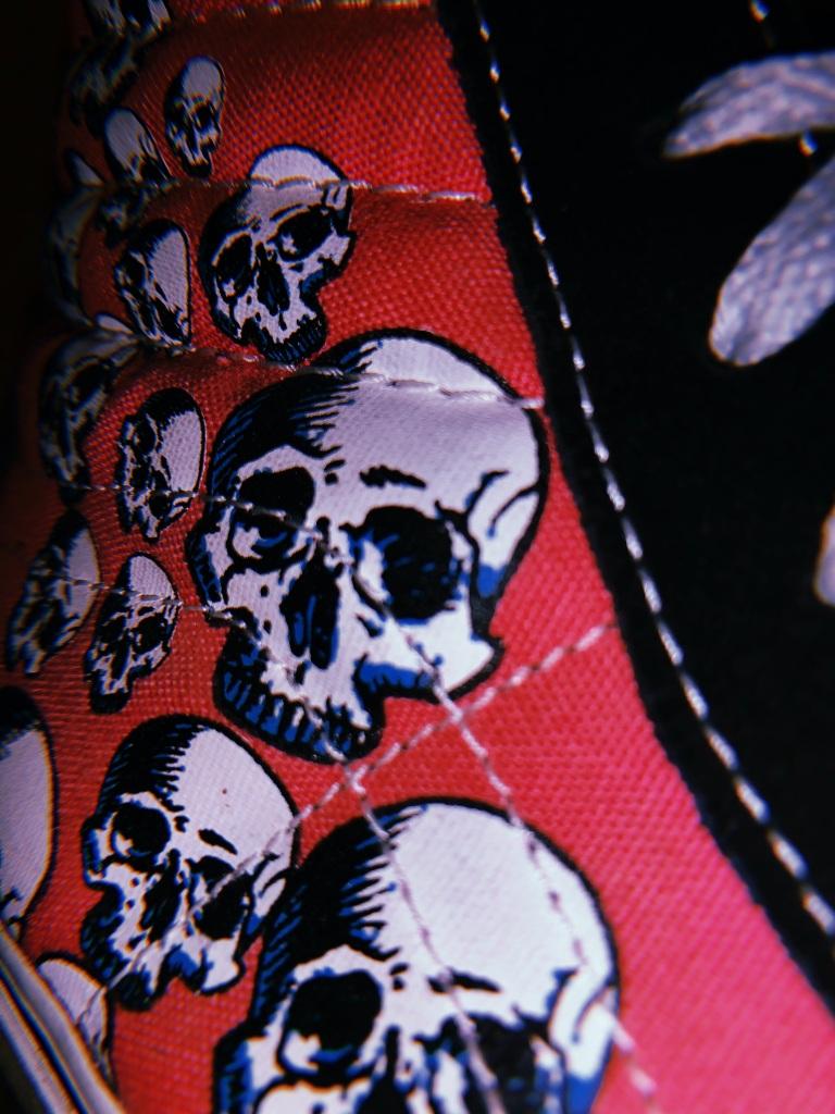 skull-vans-record-weekly
